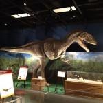 札幌市青少年科学館特別展